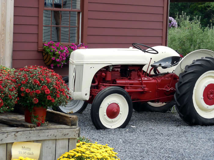 DuBois Farms UPick And Upcoming Events - Fruit yard car show